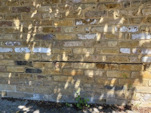 Graham Rd garden wall 2