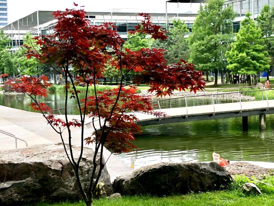 Chiswick Business Park 2 - Jennifer Griffiths