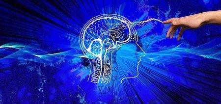 脳 インターフェース 可視化