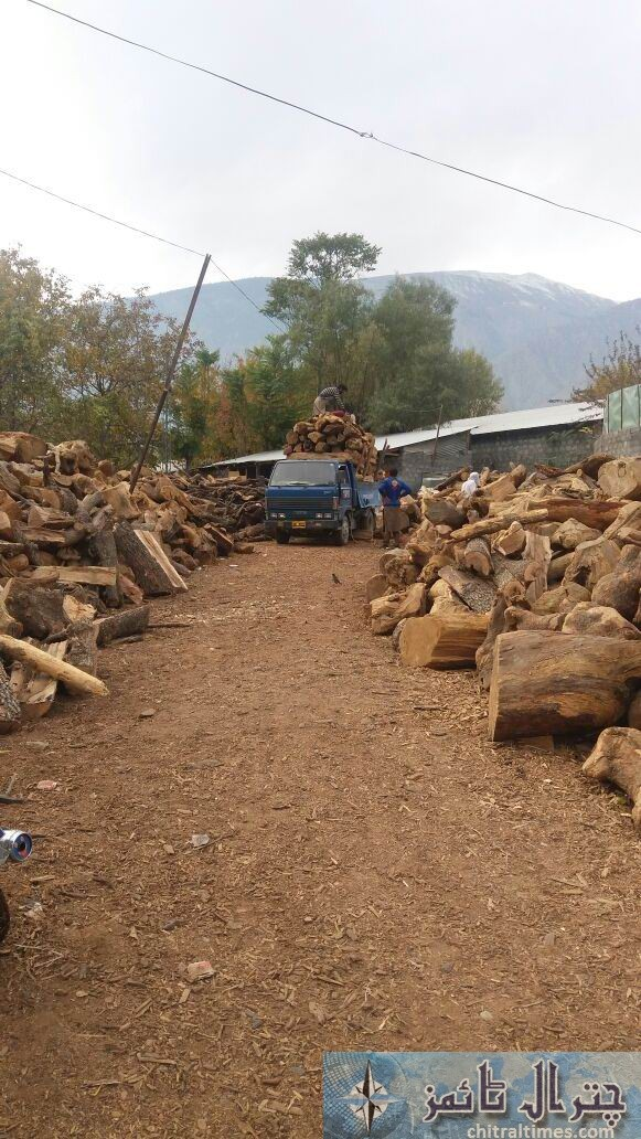 wood stock chitral