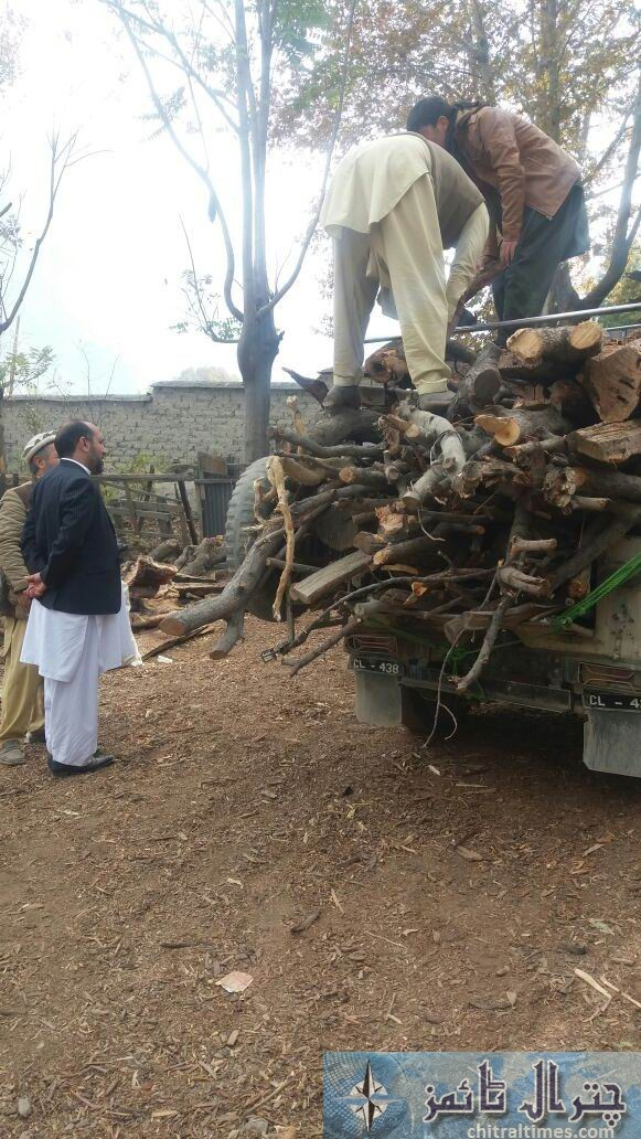 wood stock chitral2