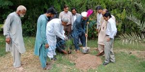 wazir zada in plantation drive scaled