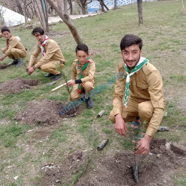 karimabad valley plantation campaign boy scouts chitral 3