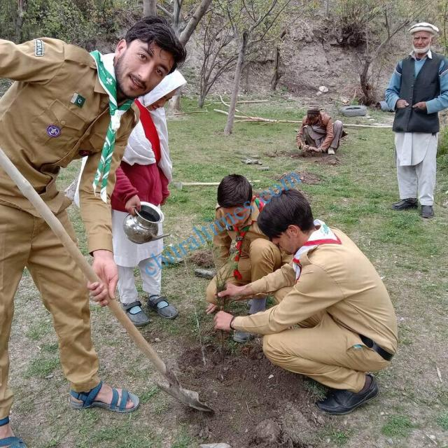 karimabad valley plantation campaign boy scouts chitral 4