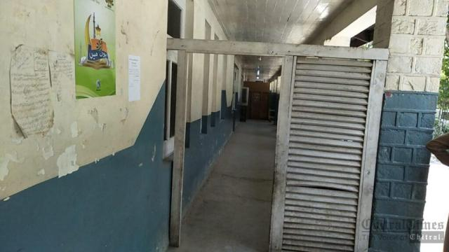 chitraltimes dhq hospital ward