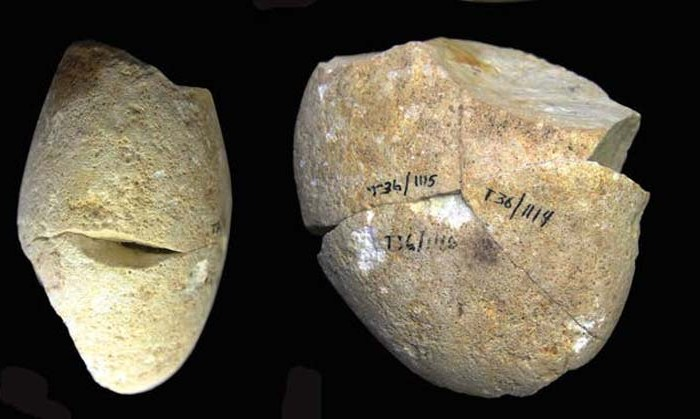 Turning point in human evolution found in Israel