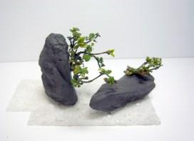 検討模型 Stones and plants model