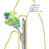 灌水装置スケッチ Watering system