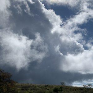 高ボッチ高原で待望の陽光が差し込むシーン