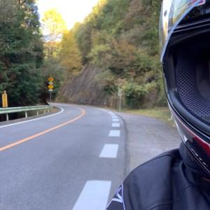 うねうねカーブが続く快走ロード、茶臼山高原道路にて