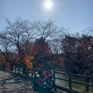 棚倉城址の紅葉を眺めるwith CBR650R②