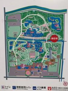 古代蓮の里・敷地Map