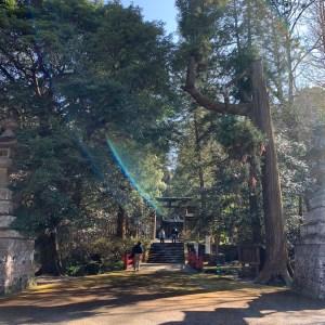 本庄市金鑽神社の落ち着いた雰囲気の境内を歩く