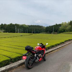 美しい茶畑の大淵笹場にて雲隠れの富士山とCBR650R②