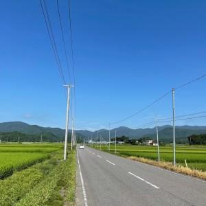 夏の緑が眩しい福島・郡山の田園ロード風景