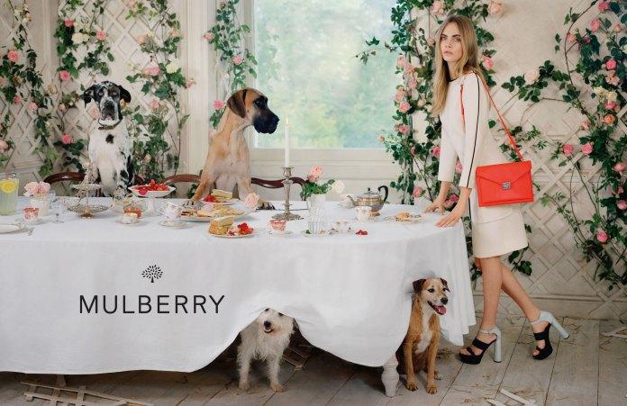 17-cara-delevingne-mulberry-1