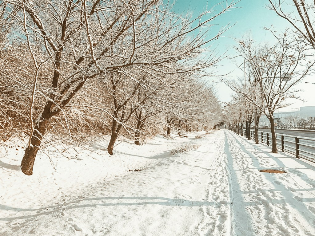 Best Time to Visit Korea - Seoul Winter Snow | www.chloestravelogue.com