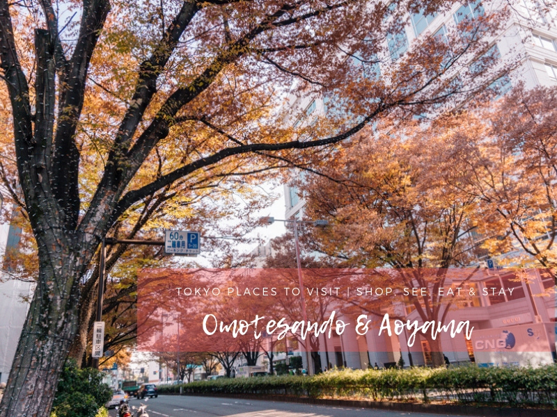 Tokyo Places to Visit   Things to Do in Omotesando & Aoyama