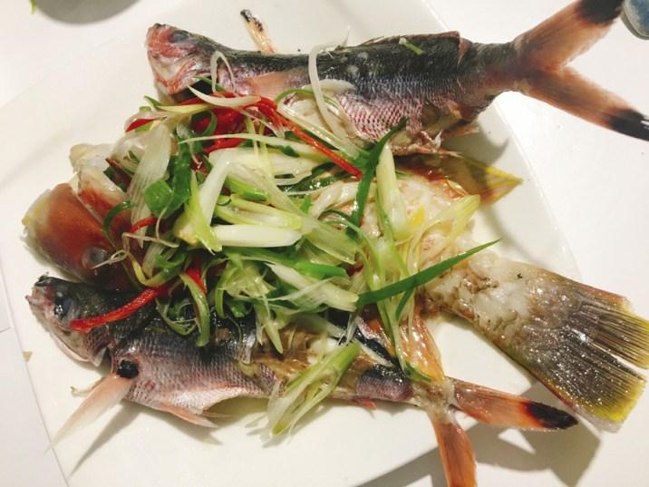 Penghu Taiwan 3 Day Itinerary | Day 2 Xiyu & Baisha: Penghu Islands Hopping Fishing Tour: Dinner on the Cruise | #Penghu #Taiwan #澎湖