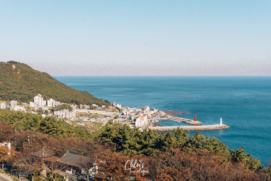 Busan Itinerary 5 Days (South Korea) | What to do in Busan Day 3 - Cheongsapo for sunrise & Moontan Road for hiking | #BusanItinerary #Busan #Korea #AsiaTravel #KoreaTravel #ThingstoDo #Cheongsapo #MoontanRoad