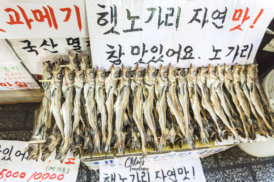 Busan Itinerary 5 Days (South Korea) | What to do in Busan Day 1 - Jagalchi, Bupyeong Kkantong, Gukje Markets and BIFF Square | #BusanItinerary #Busan #Korea #AsiaTravel #KoreaTravel #ThingstoDo #JagalchiFishMarket #BupyeongKkantongMarket #GukjeMarket #BIFFSquare #Koreanfood #Busanfood