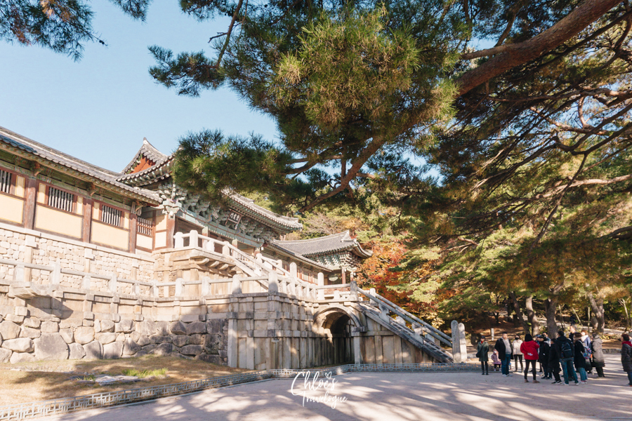 Gyeongju Day Trip from Busan: How I saw Korea's UNESCO World Heritage city in one day with Gyeongju Tours | #Gyeongju #GyeongjuDayTrip #BusanDayTrip #GyeongjuTour #SouthKorea #Korea #KoreaTravel #AsiaTravel #UNESCOWorldHeritageSites #Bulguksa #Buddha