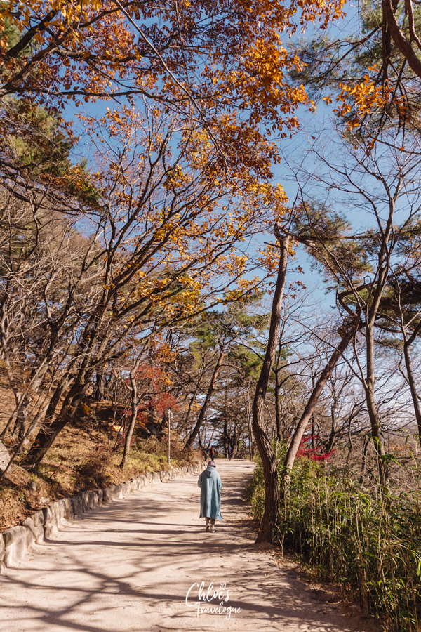 Gyeongju Day Trip from Busan: How I saw Korea's UNESCO World Heritage city in one day with Gyeongju Tours | #Gyeongju #GyeongjuDayTrip #BusanDayTrip #GyeongjuTour #SouthKorea #Korea #KoreaTravel #AsiaTravel #UNESCOWorldHeritageSites #SeokguramGrotto #Buddha