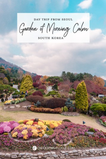 Garden of Morning Calm: Don't miss out on Korea's most beautiful arboretum and botanical garden on the hill of Mt. Chukryeong! | #GardenofMorningCalm #AutumninKorea #DayTripsfromSeoul #TravelKorea #Gapyeong #AsiaTravel