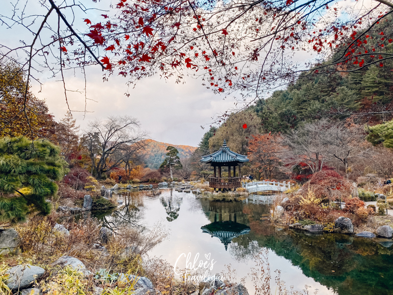 Garden of Morning Calm: Signature Gardens - Pond Garden | #GardenofMorningCalm #AutumninKorea #Korea #Gapyeong