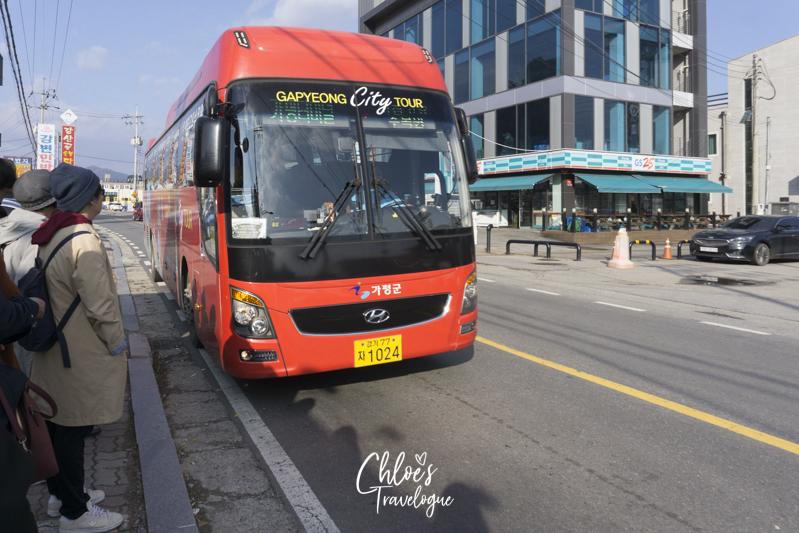 Gapyeong City Tour Bus: Gapyeong Station to Nami Island to Petite France to Garden of Morning Calm | #NamiIsland #Korea #Gapyeong