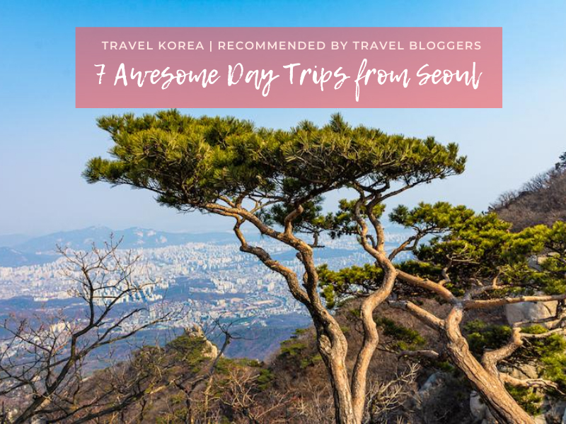Best Day Trips from Seoul, Korea