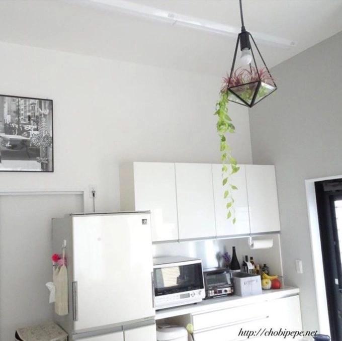 パモウナの食器棚