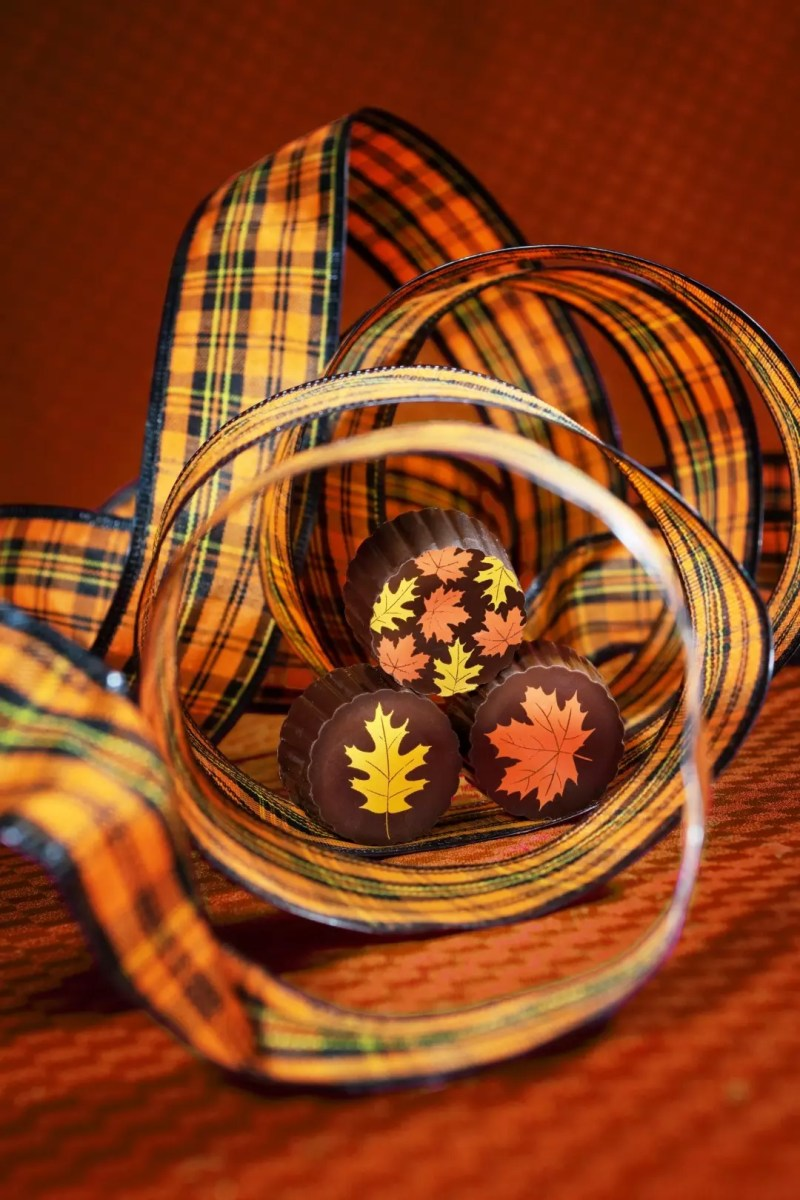 Three maple truffles - dark chocolate with orange and yellow leaves on top - with Fall themed ribbon wrapped around them