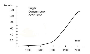 Sugar Consumption Over Time