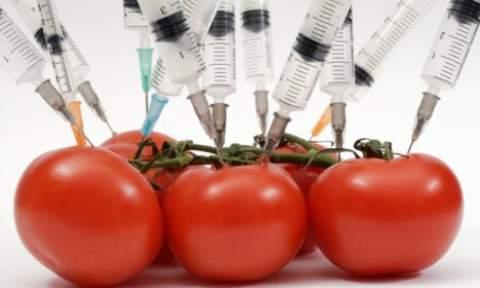 MonsantoSeedApproval