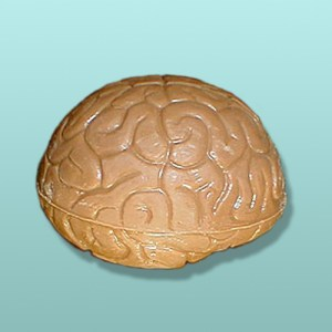 3D Chocolate Brain Small