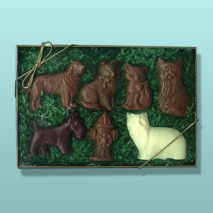 Chocolate Veterinarian Pet Gift Set