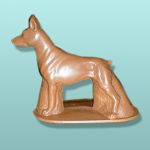CHOCOLATE DOBERMAN DOG