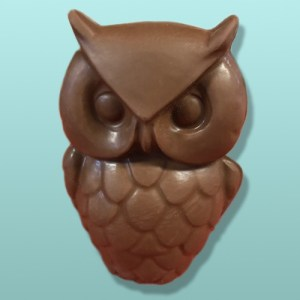 3D Chocolate Wise Old Owl