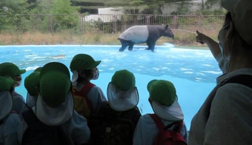 年長 多摩動物公園 見学