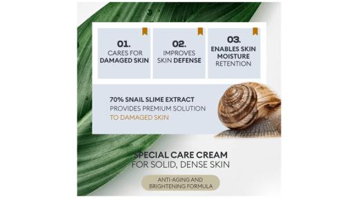 베스트 초이스 한국 화장품 아마존