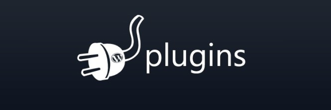 essential wordpress plugins