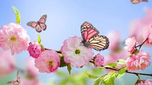 images 1 - 敏感肌さんじゃなくてもご注意。春の肌荒れ対策