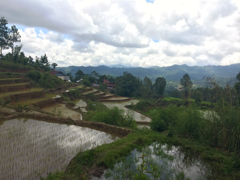 Trekking Tanah Toraja