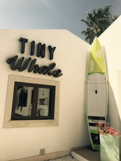 Tiny Whale Surf Lodge Lagos Portugal
