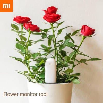 Xiaomi-plantas