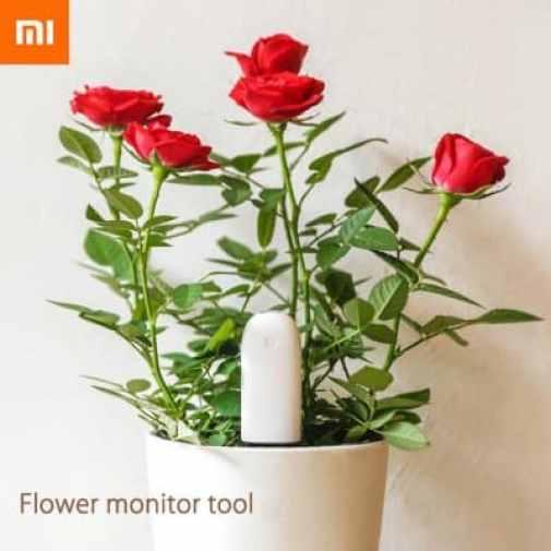 Oferta sensor remoto para plantas Xiaomi Mi Plant por 8 euros (Cupón descuento)
