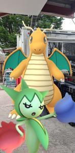 Community Day Pokemon Go Roselia Community Day