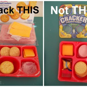 Hey There Smart Kids: Pack This, Not That!