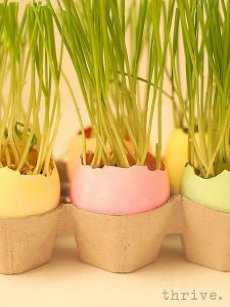 Easter Egg Wheat Grass Centerpiece from THRIVE